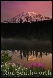 8453mt_rainier_sunrise