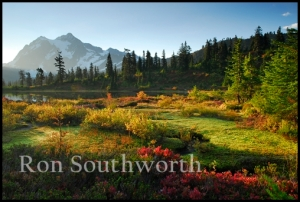 9489shuksan_morning_fall_colors